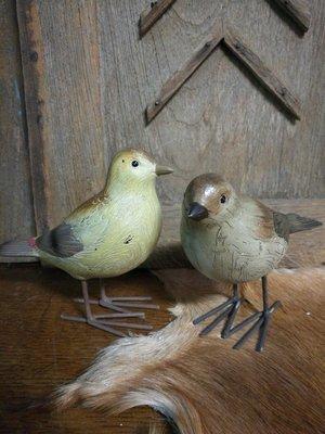 Vogel mus donker