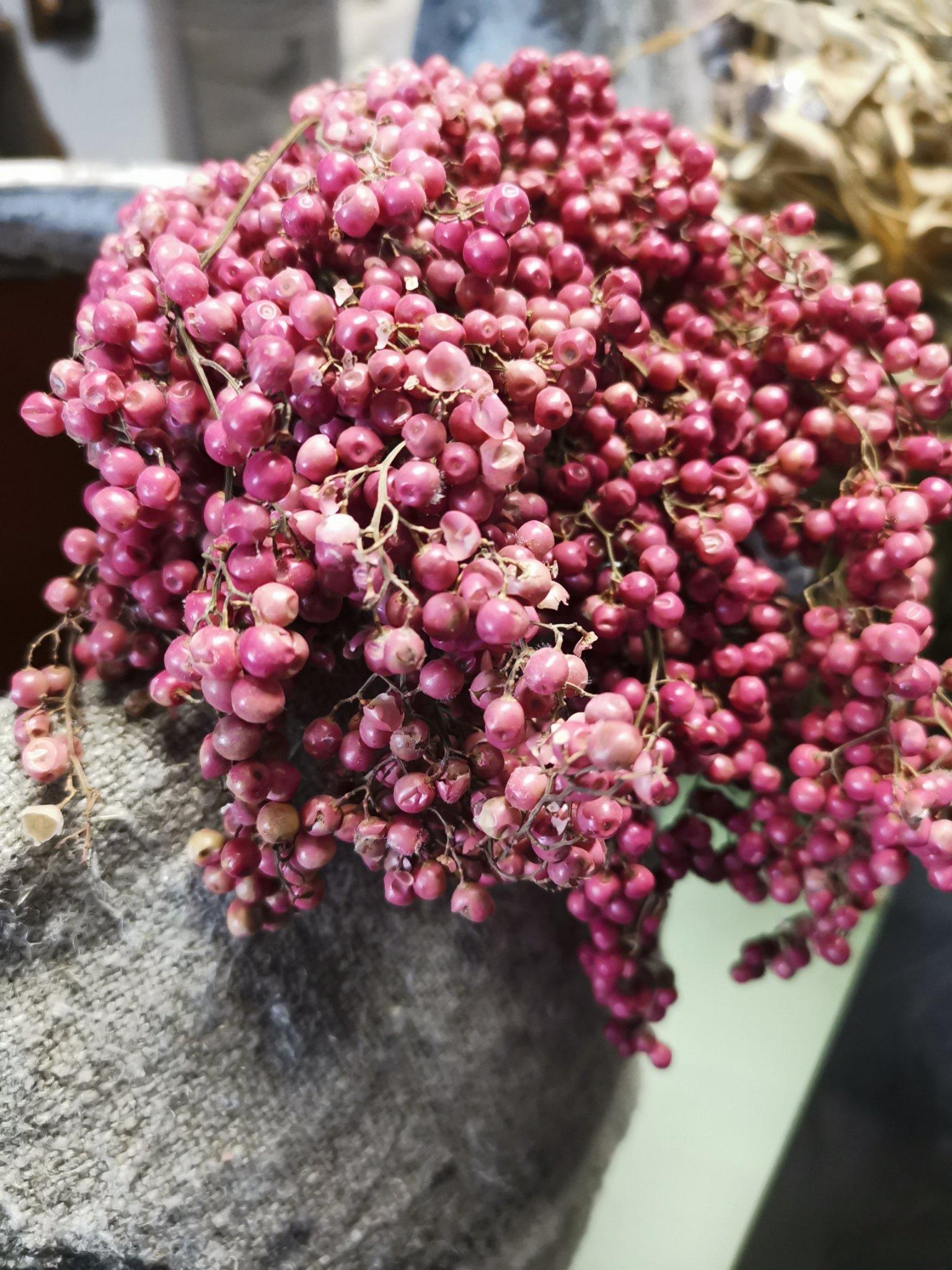 Peperberrie, grote bos 01605