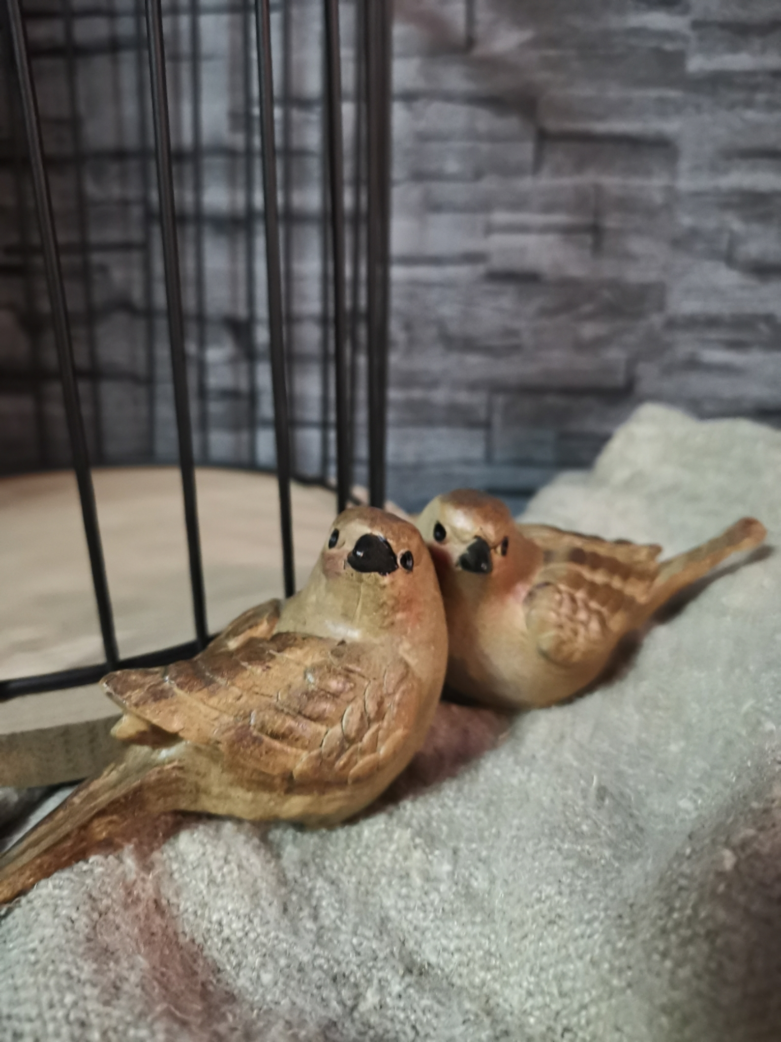Vogel zittend 01695