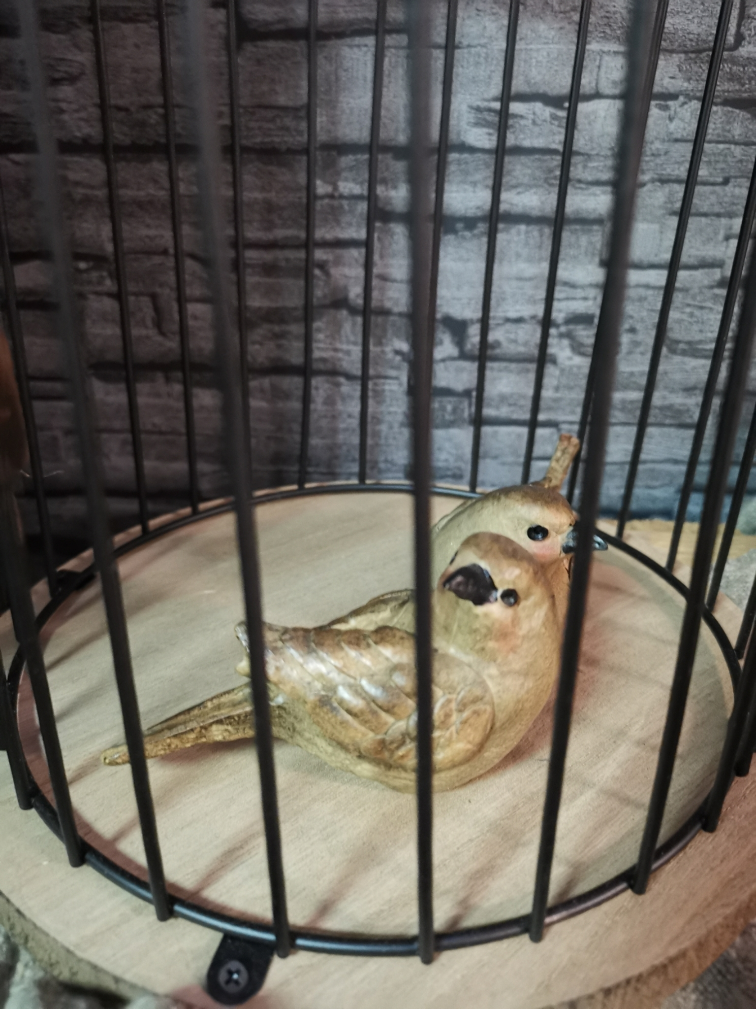 Vogel zittend
