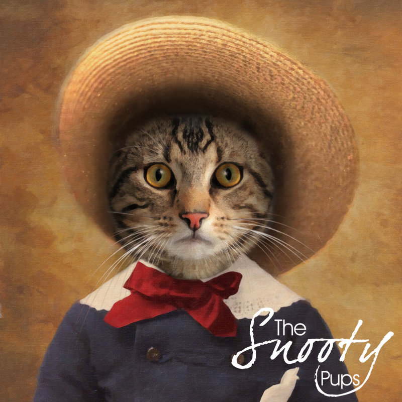 Peasant Boy Custom Cat Portrait 00071