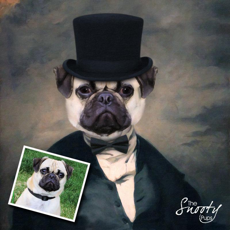 Mr Stogy Portrait Dog Portrait 00078