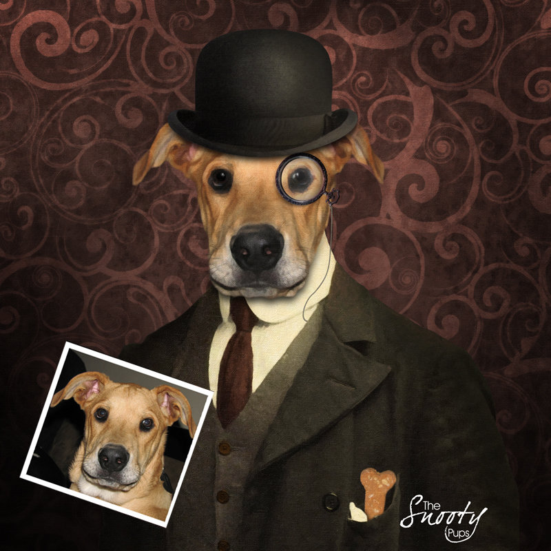 Bowler Hat Custom Dog Portrait 00096