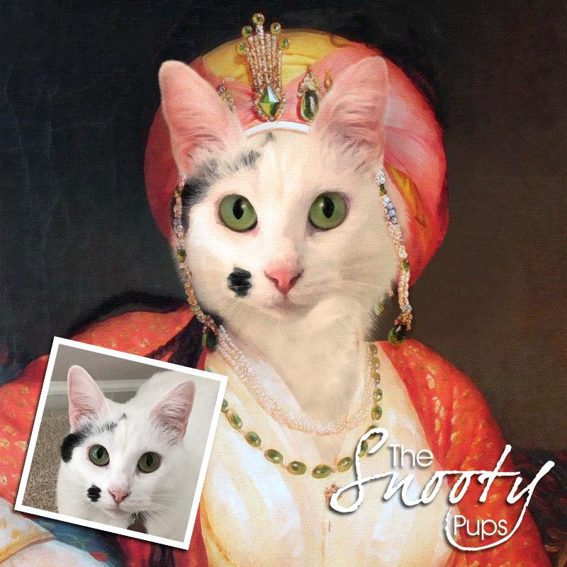 Cat Portrait - Mrs Bobbles