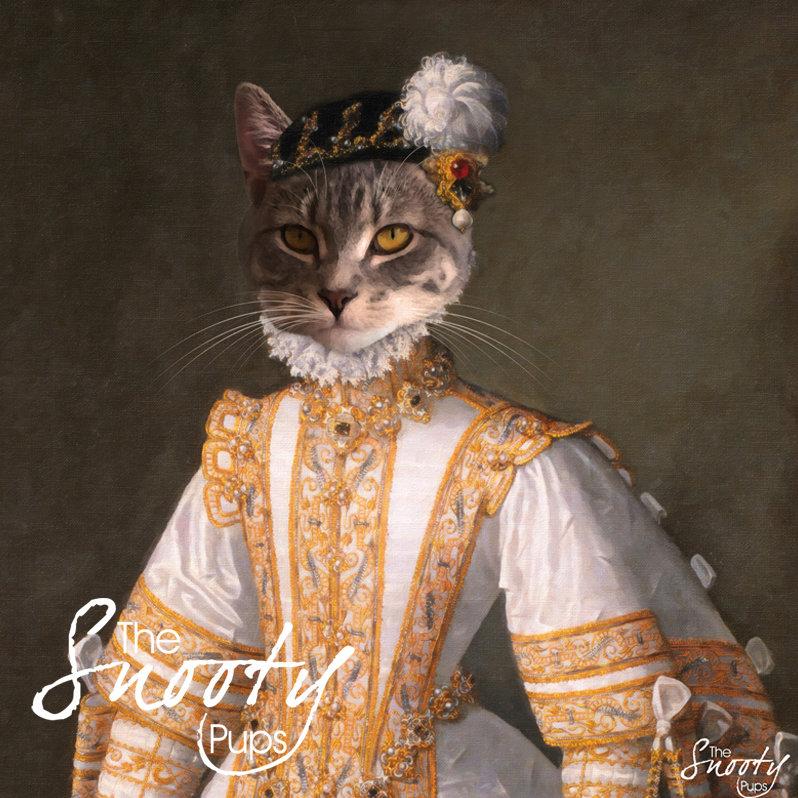 Miss Bell Portrait Cat Portrait 00109