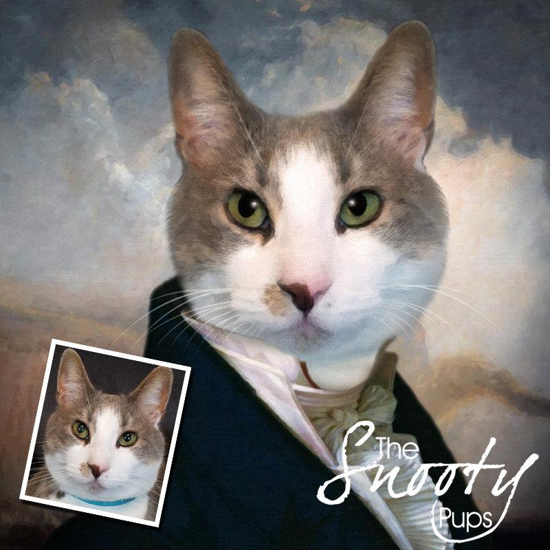 Gentleman Custom Cat Portrait 00110