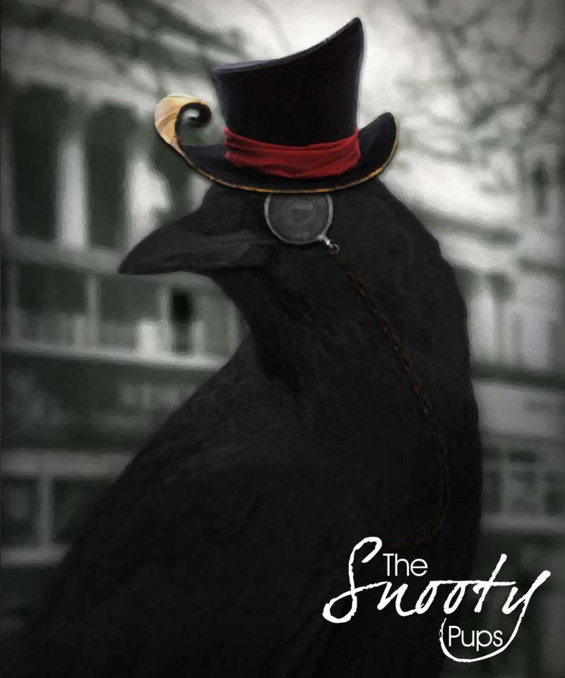 Crow Portrait 00113