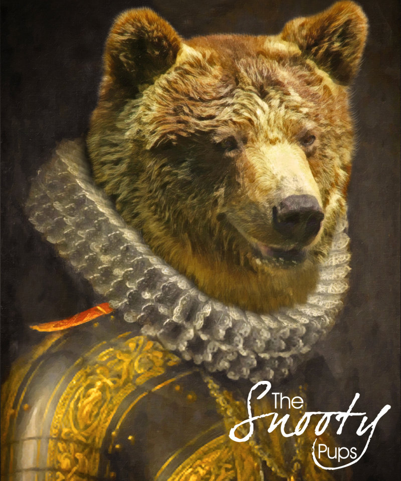 Bear Picture, Bear Portrait, Bear Print, Bear Wall hanging 00115
