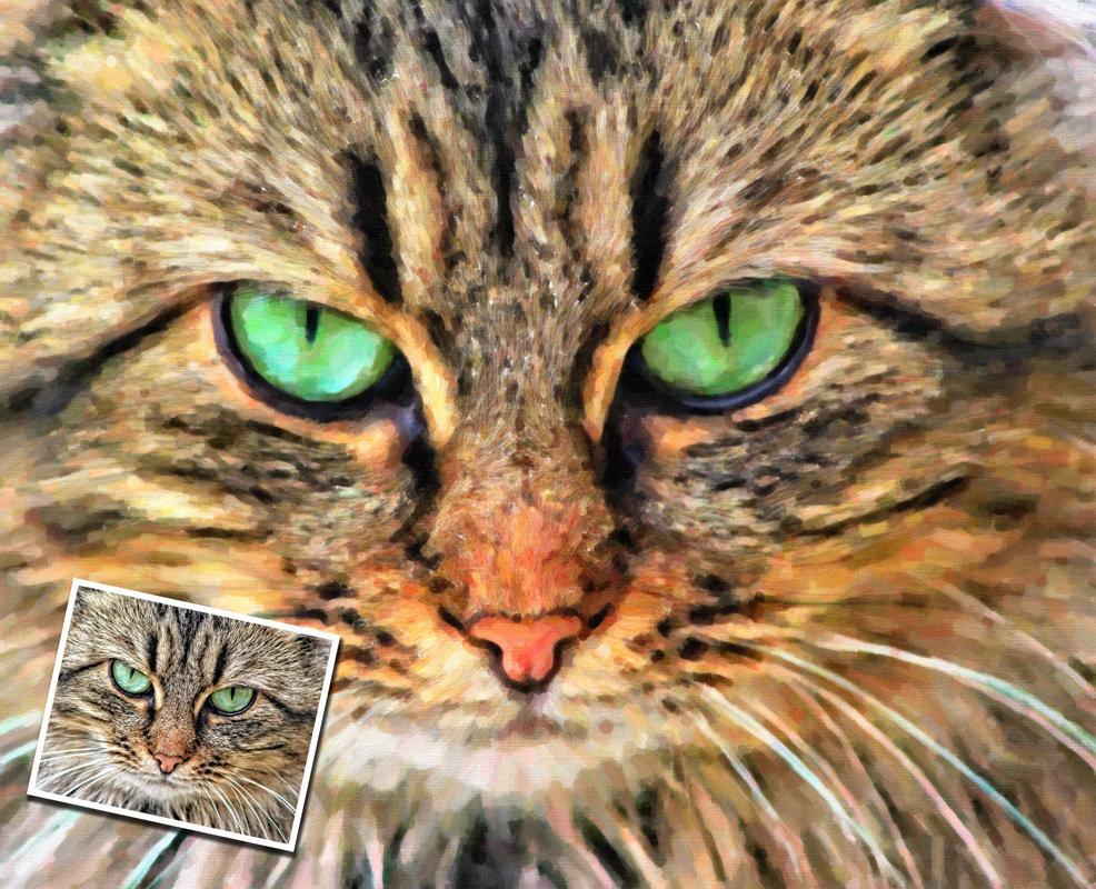Custom Cat Portrait Oil Painting Style 00127