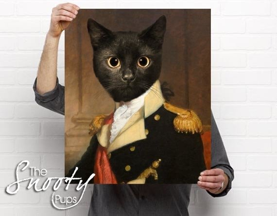 General Cat Portrait Poster