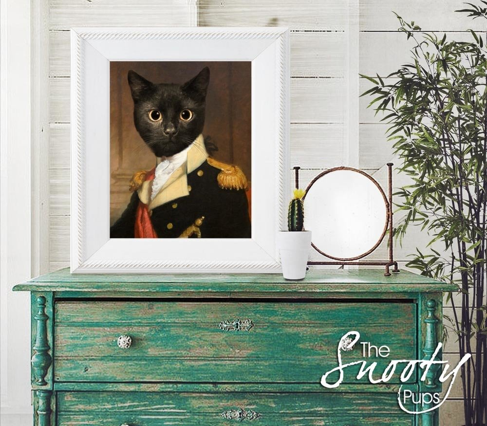 General Cat Portrait