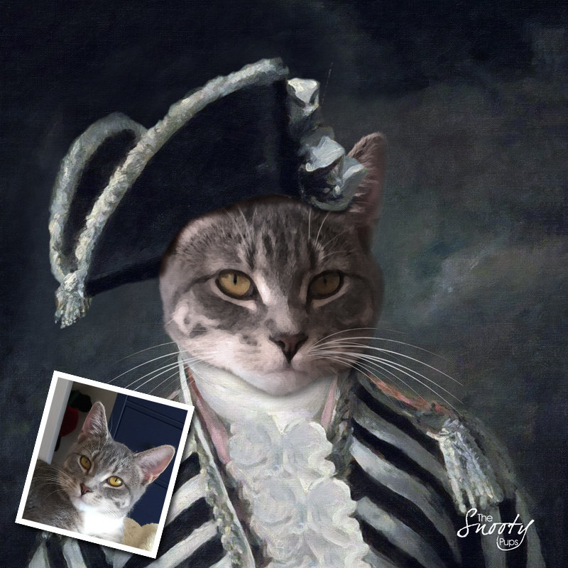 Vintage Custom Cat Portrait 00144