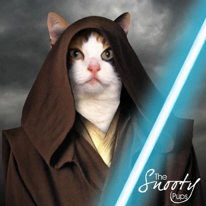 Custom Cat Portrait - Obi Wan Star Wars