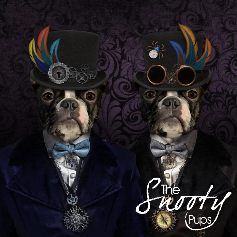 Custom  Pet Portrait - STEAMPUNK Male Couple