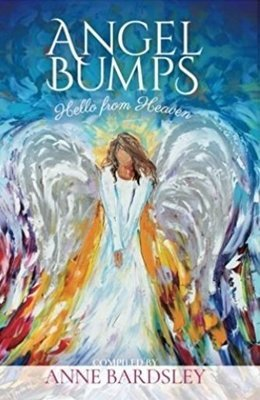 Angel Bumps Book