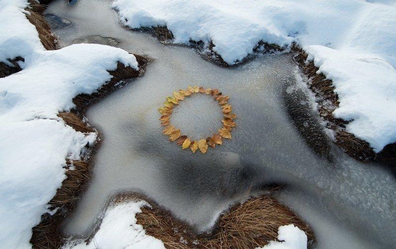 Ice Leaf Circle
