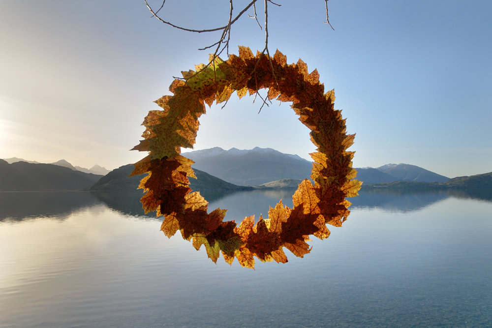Autumn Leaf Cycle 45