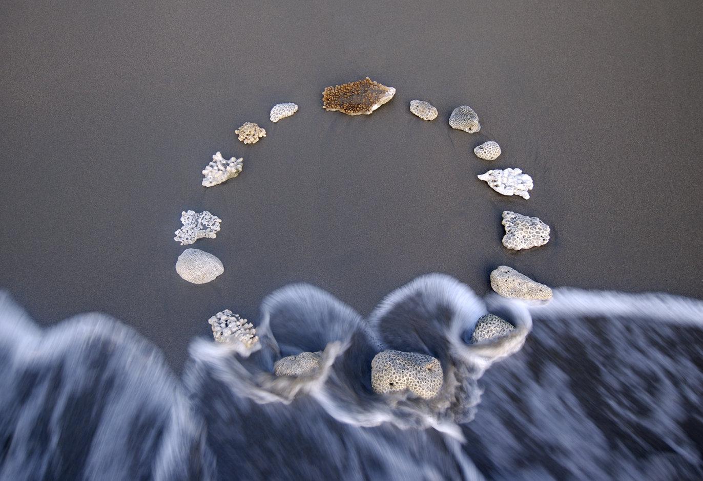 Coral Circle 48