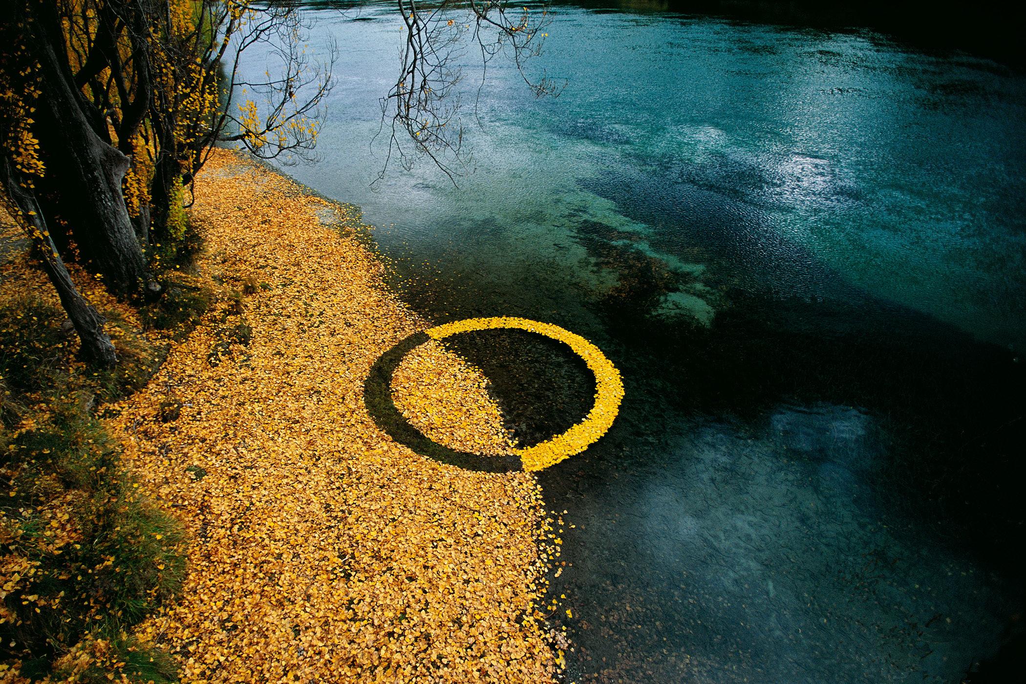 Autumn Leaf Circle 52