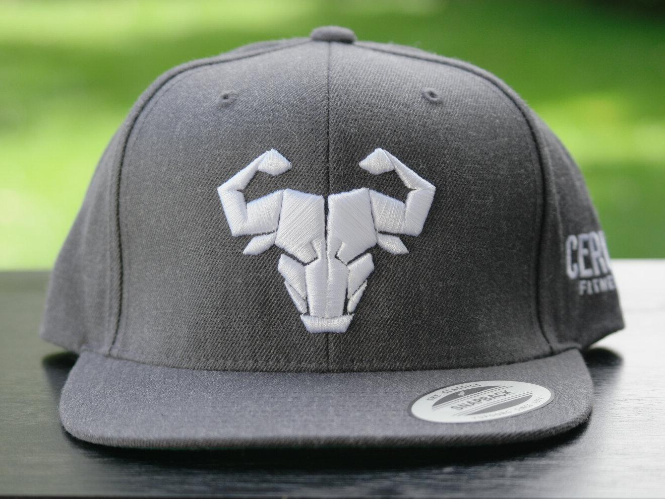Cerus Gray Snapback Hat CH000008