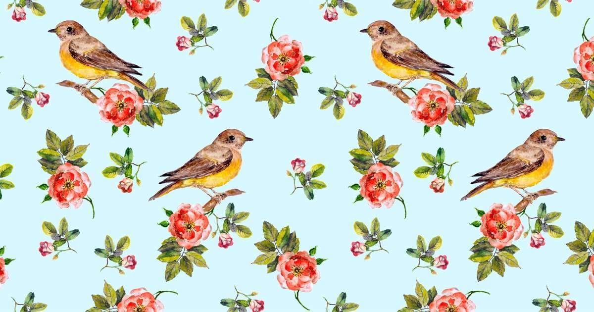 Espadrille PAYOTE Judith, imprimé oiseaux multicolore