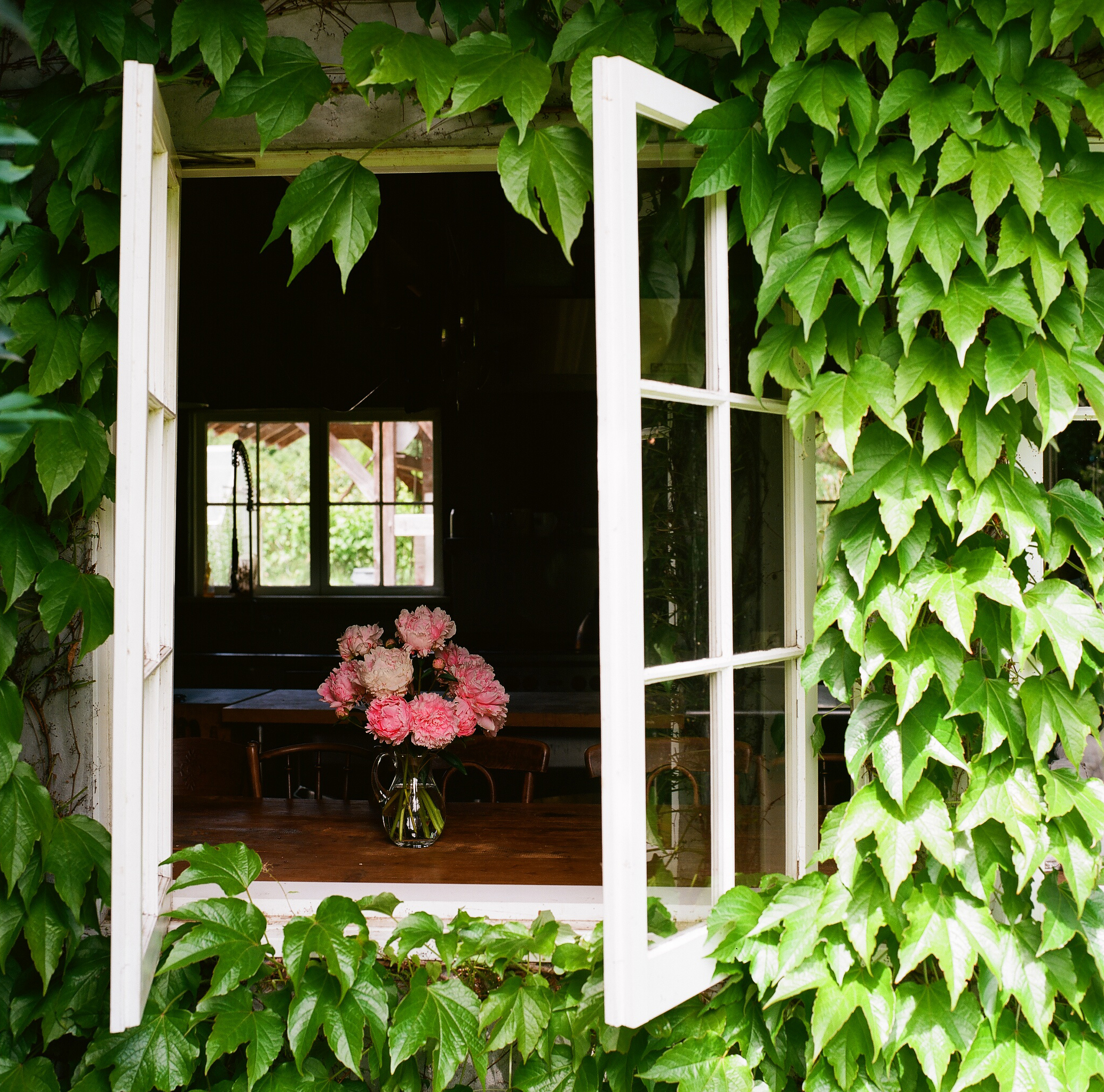 August 4 - Creating a Garden Inspired Floral Arrangement with Nisha Klein summer2019-07