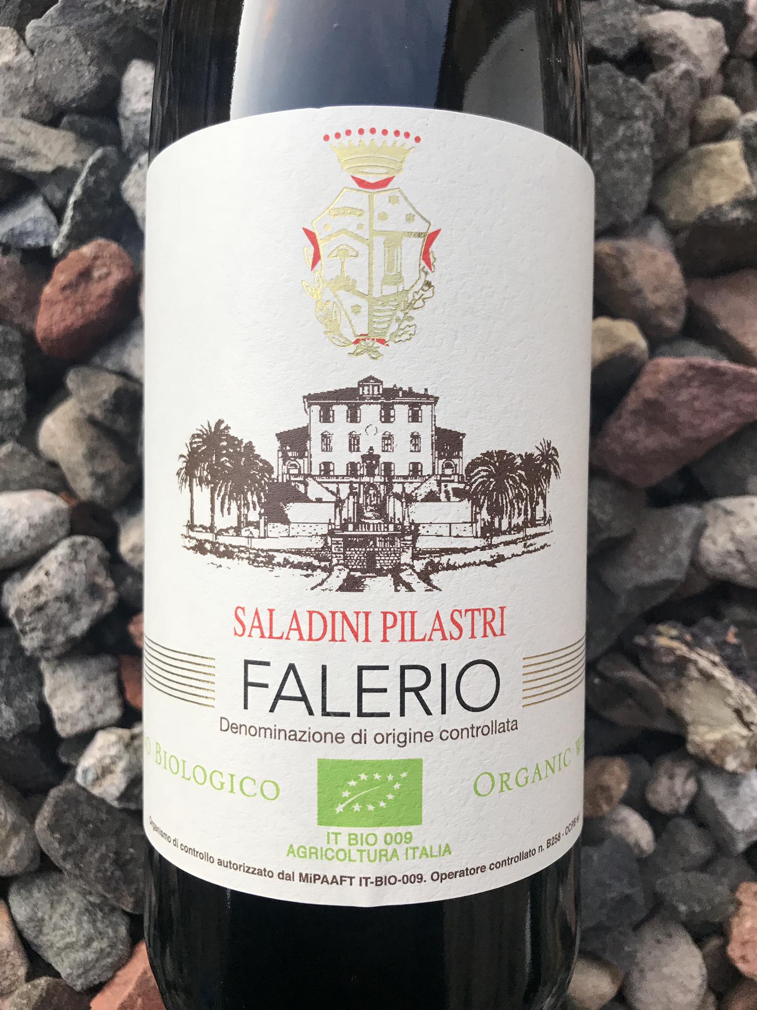 Falerio, Saladini Pilastri DOC, 2018
