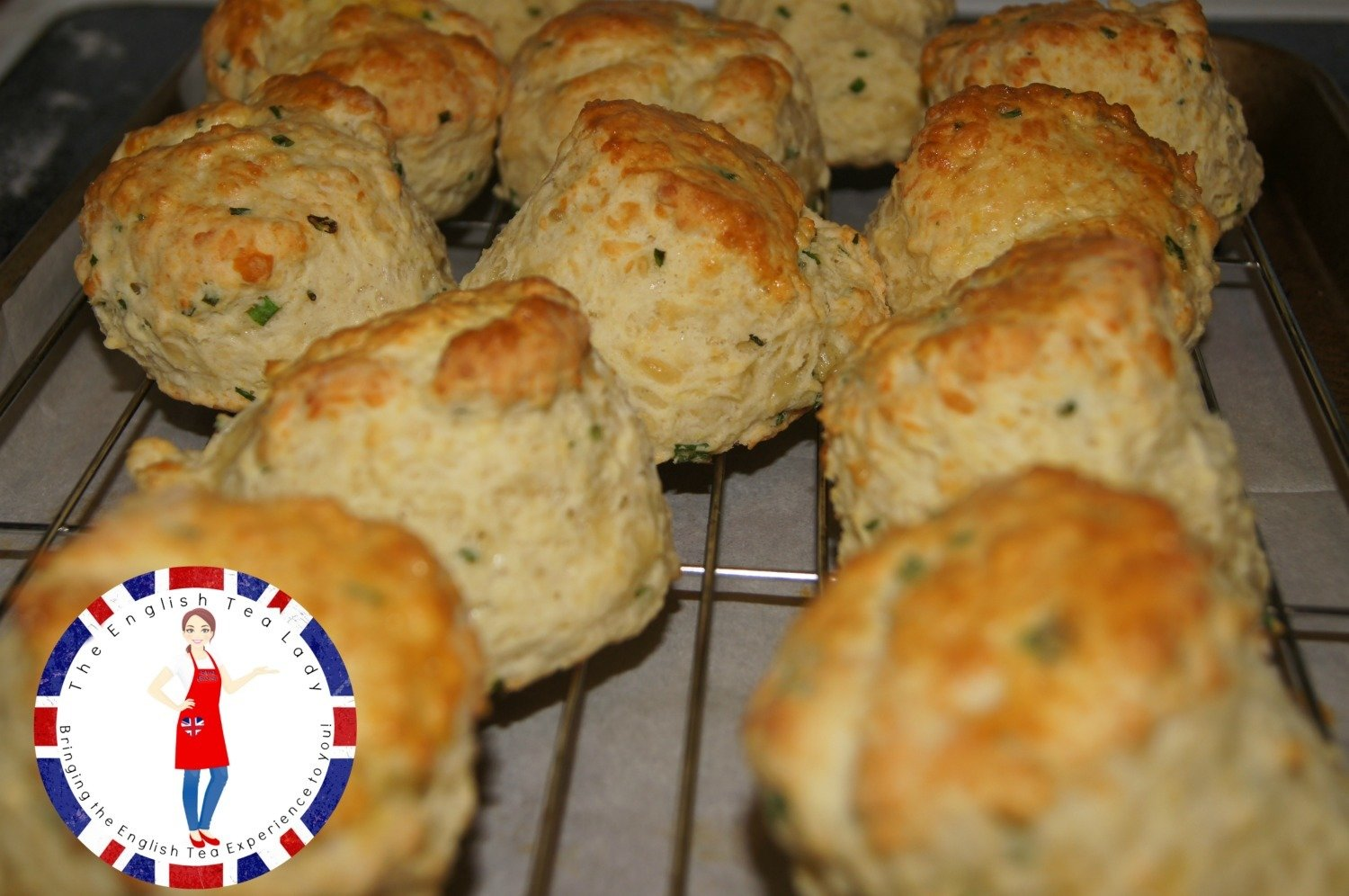 Cheddar Chive Savory Scone SC004