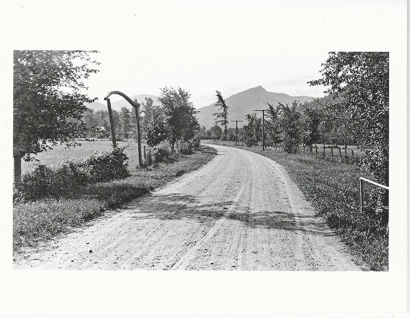 Adirondack Historic Photo Notecards