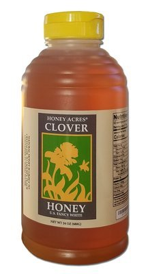 Wisconsin Honey Squeeze Bottle - 24 Ounce