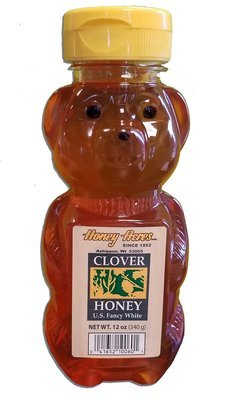 Wisconsin Honey Bear Squeeze Bottle - 12 Ounce