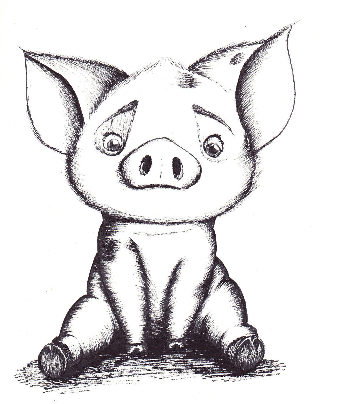 Pig drawing Draw033