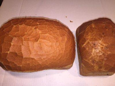groot wit brood