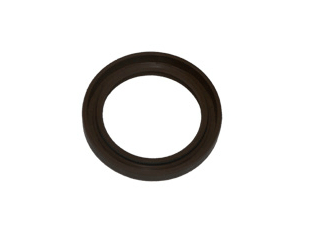 JAC CRANKSHAFT FRONT OIL SEAL 1002420FA