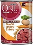 Purina ONE Tender Cuts in Gravy Beef, 13-Ounce (Pack of 12) (5/19) (A.K4)