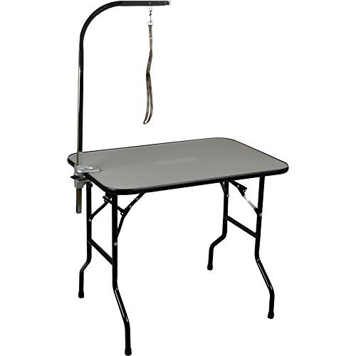 "Precision Pet Professional Series Folding Grooming Table with Arm Clamp and Noose, 36"" X 24"" (B.W4)"
