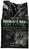 World's Best Cat Litter Forest Scented Clumping Formula 12 lbs  (RPAL-Q6)