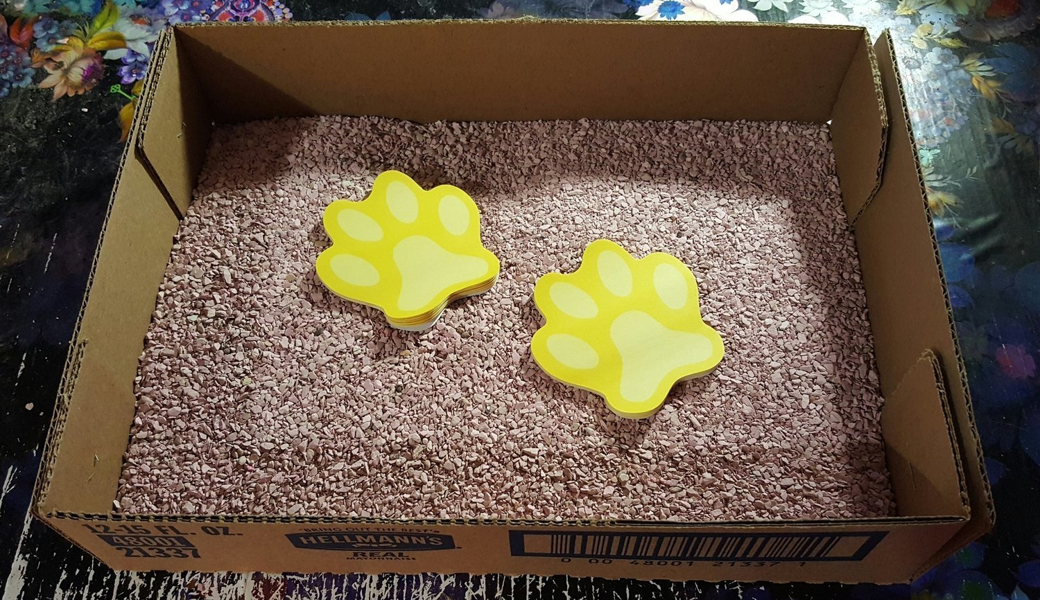 10 FUR $1.00 Disposable Cardboard Litter Boxes **Shipped flat and corners will need to be glued or stapled** (B)