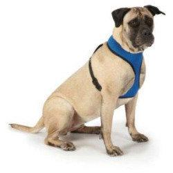 "Mesh Dog Harness 19-26"", Color: Blue (RPAL77)**Matching Lead SKU 721343892502**"