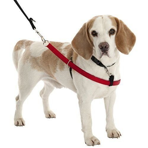 Walkezee Harness X- Large (RPAL134)