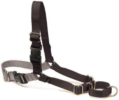 "PetSafe Easy Walk Black Dog Harness (Medium; 20""-28"" Girth) (RPAL134)"