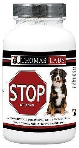 Stop Stool Chew