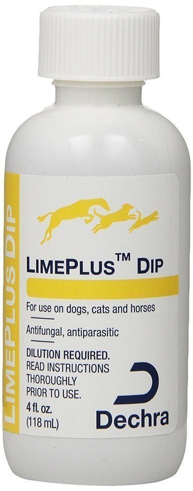 LimePlus Dip 4 oz.