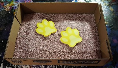 Disposable Cardboard Litter Boxes **Shipped flat and corners will need to be glued or stapled**