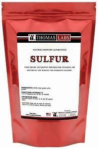 **SALE** Thomas Labs Sulfur Powder (16 oz) (7/15) (O.AC2/PR)