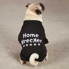 Home Wrecker Tee - SMALL/MEDIUM (B.125) (APPAREL)