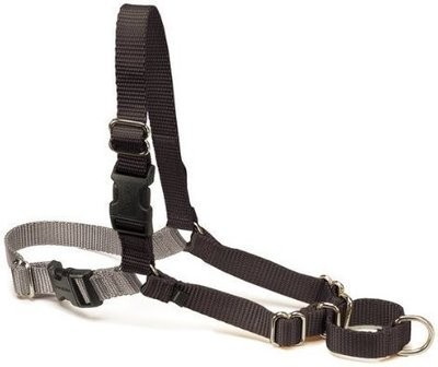 PetSafe Easy Walk Black Dog Harness (Medium; 20