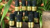 12 Healing Of Ancient Scripture Essential Oil Kit EO-12 HOAS-Kit