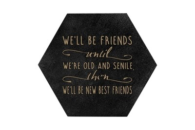 We'll Be Friends until We're Old and Senile, then We'll be New Best Friends HEX Hand-Painted Wood Coaster Set