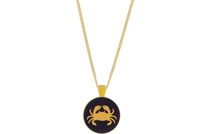 Crab Pendant Classic Style with Bezel on Chain Necklace
